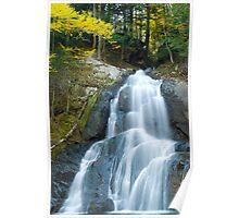 Moss Glen Falls Poster