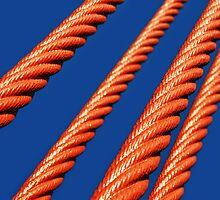 SAN FRANCISCO - Golden Gate Bridge Support Cables by jsafford