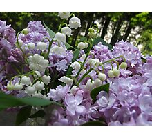 Delights of Spring Photographic Print