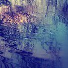iphone- splash by Angela King-Jones