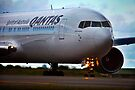 Qantas heavyweight on a roll by Chris Westinghouse