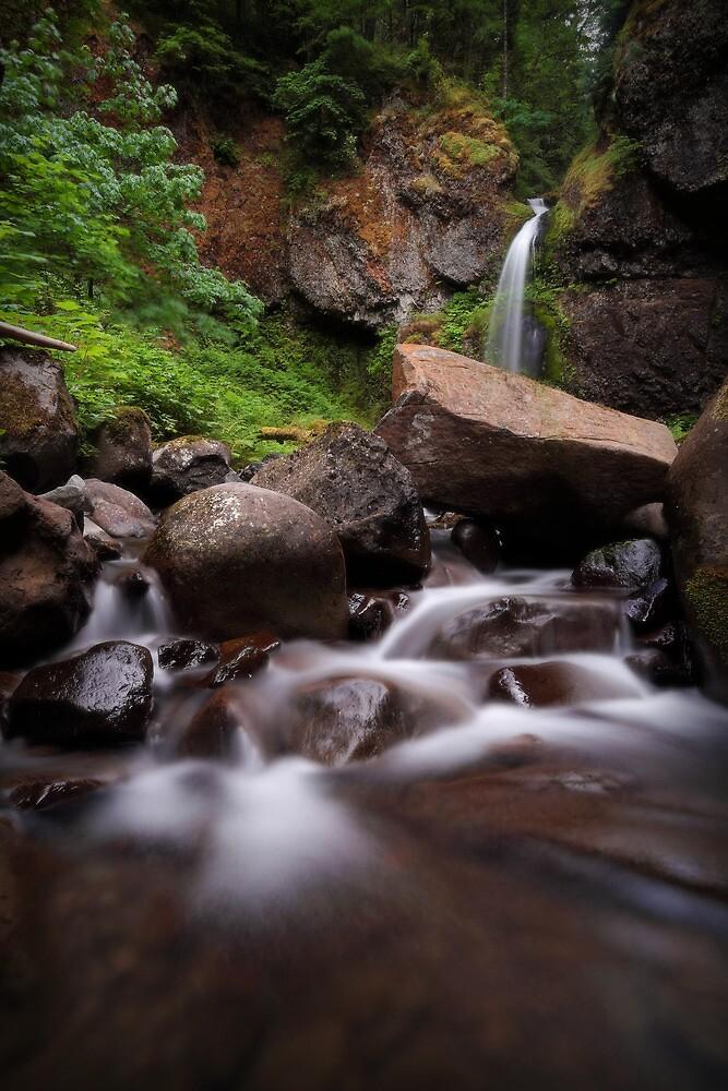 Moffett Falls I by Tula Top