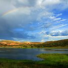Rainbow Over Watson Lake by Diana Graves Photography