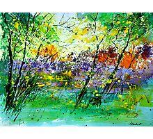 watercolor 218090 Photographic Print