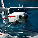 Seaplane by Chris Westinghouse