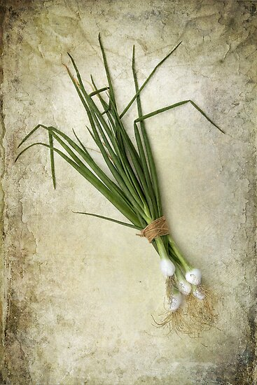 Spring Onions by Patricia Jacobs DPAGB LRPS BPE4