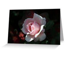 Minnesota Rose Greeting Card