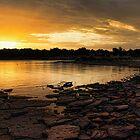 Sunrise On The Rocks by Carolyn  Fletcher
