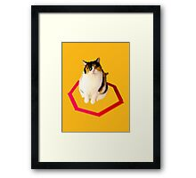 cat trap Framed Print