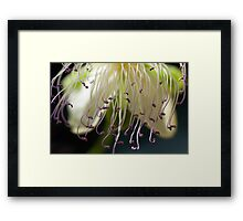Delicate Curtain Framed Print