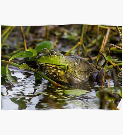 Female Bullfrog Oil Poster