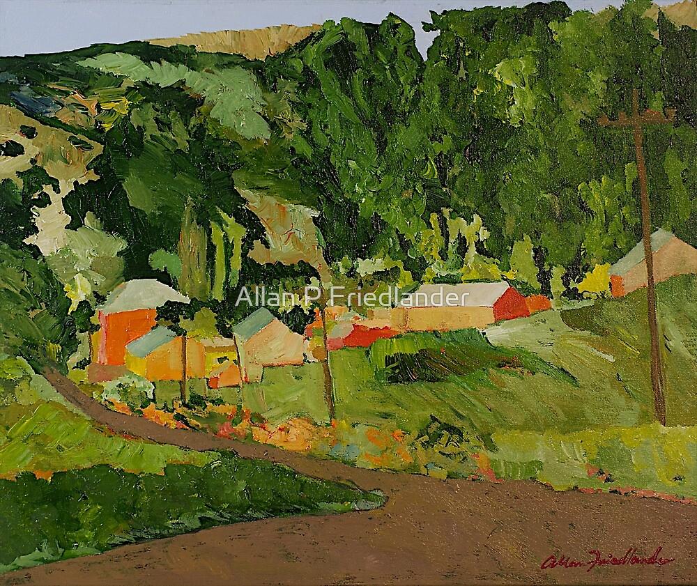 Down the Road by Allan P Friedlander
