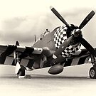 P-47 Thunderbolt by Ian Merton