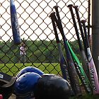 Coming to bat by Amanda Reed