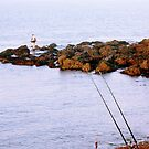 Where's best to fish by thermosoflask