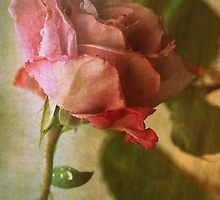 Intuitively Romantic by Lozzar Flowers & Art