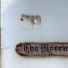 The Moorings - Appledore by Victoria limerick