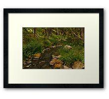 Trickle creek Framed Print