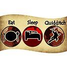 Eat, Sleep, Quidditch by Isaac Novak