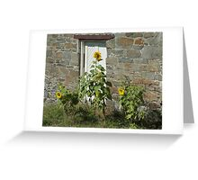 Sunflowers and the Old Stone Wall Greeting Card