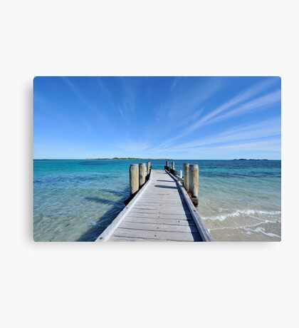 Penguin Island Canvas Print