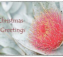 Christmas greetings by Jennie  Stock