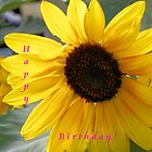 Sunflower Happy Birthday by © Betty E Duncan ~ Blue Mountain Blessings Photography