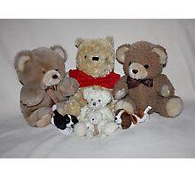 Teddy Family Portrait Photographic Print