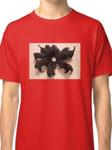Nine Rottweiler Puppies Eating From One Food Bowl Classic T-Shirt