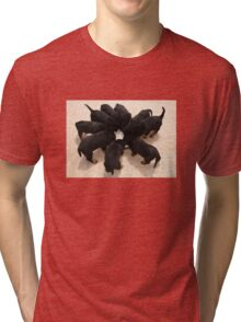 Nine Rottweiler Puppies Eating From One Food Bowl Tri-blend T-Shirt