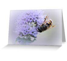 Striped buzz......... Greeting Card
