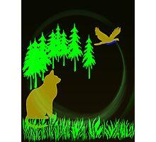 Cat Stalk Photographic Print