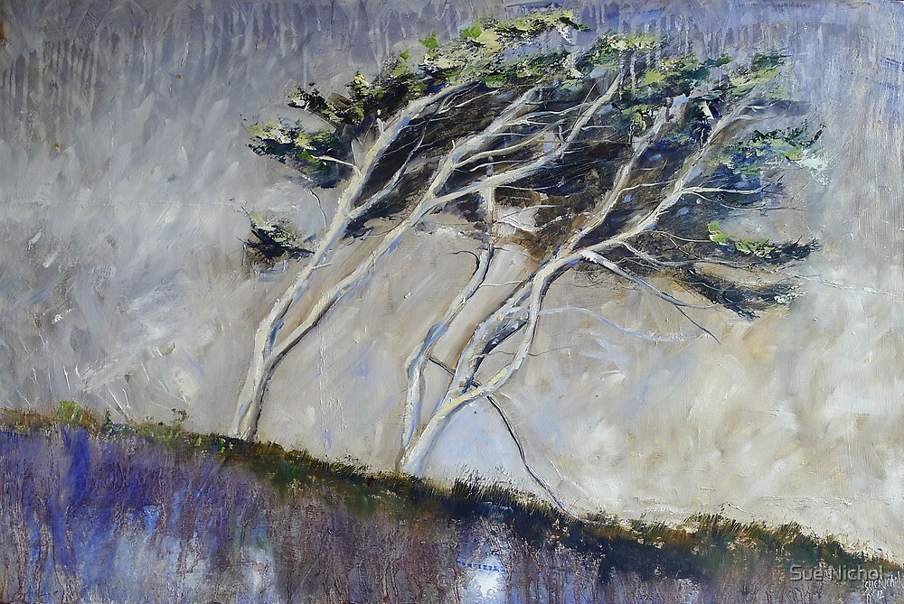 Cornish Trees by Sue Nichol