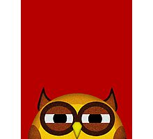Pocket owl is highly suspicious Photographic Print