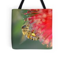 Bee on red callistemon Tote Bag