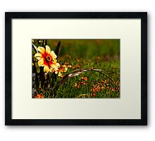 Flowers by the river Framed Print