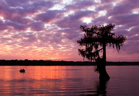Lake Martin Sunset by Paul Wolf
