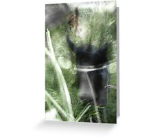 cats in the grass Greeting Card