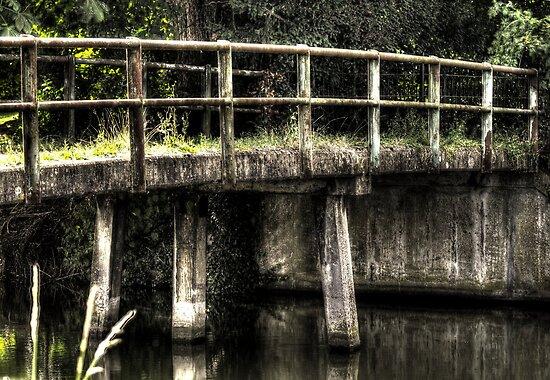 Bridge over still water by Nicole W.