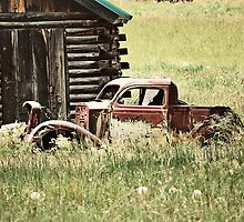 Vintage Truck by photecstasy