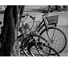 Bicycles-bicycles Photographic Print