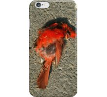 Dead Red Cardinal iPhone Case/Skin