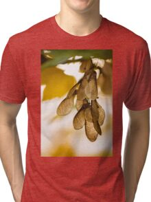 Maple Tree Tri-blend T-Shirt