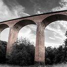 Saltburn Viaduct by Darren Allen