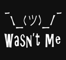 Wasn't Me ... by LevelB