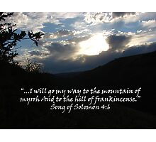 """Song of Solomon 4:6""  by Carter L. Shepard Photographic Print"
