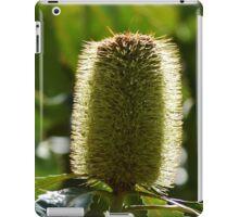 Banksia nectar iPad Case/Skin
