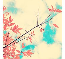 Pink fall leafs on retro vintage sky  Photographic Print