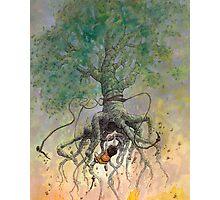 The Roaming Oak Photographic Print