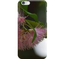Pink blossums iPhone Case/Skin
